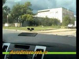 Сдаем вождение по городу в Питере: уловки инспекторов ГАИ СПб_2 (исправленная версия!)