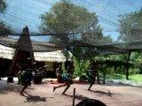 Африканская деревня в парк-сафари