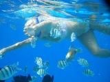 Плавание в Красном море